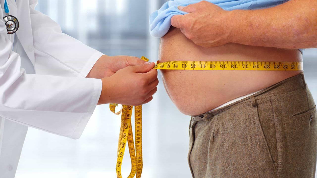 Bactérias probióticas ajudam a controlar apetite e o excesso de peso