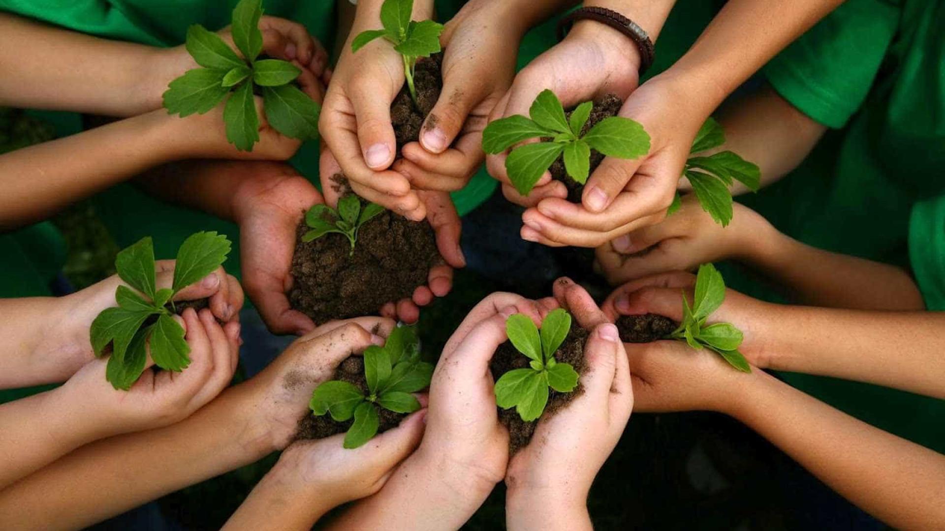 Industrializados longes do desenvolvimento sustentável