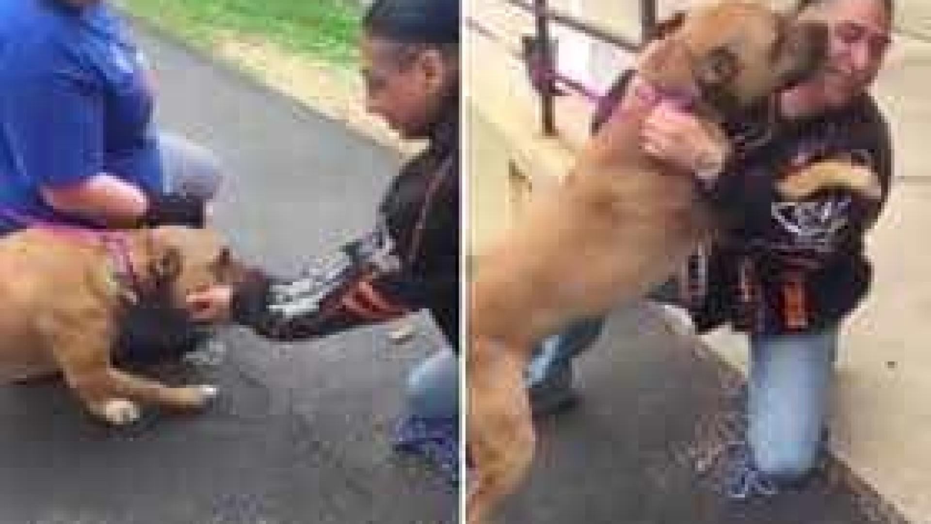 Homem reencontra cão desaparecido depois de 2 anos