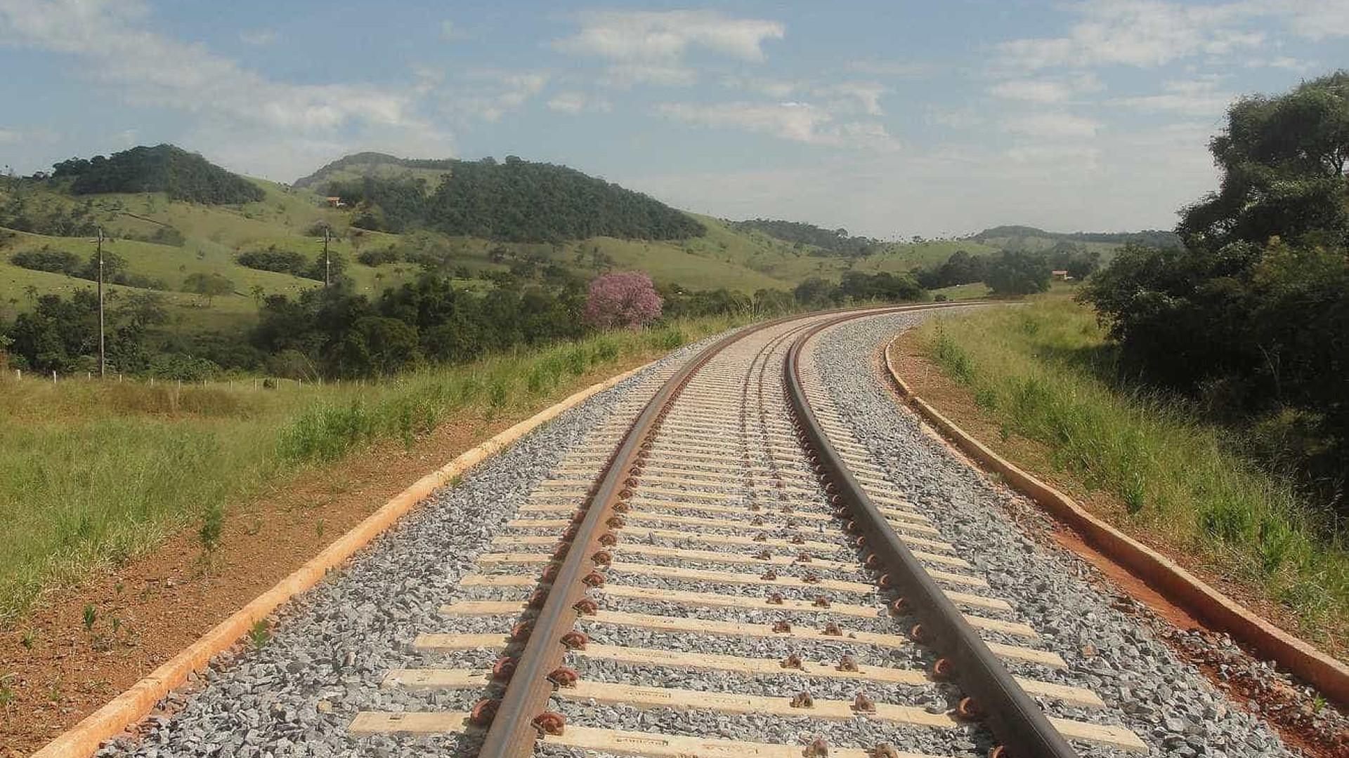 Fraude em ferrovias envolveu 37 empreiteiras, segundo PF de Goiás