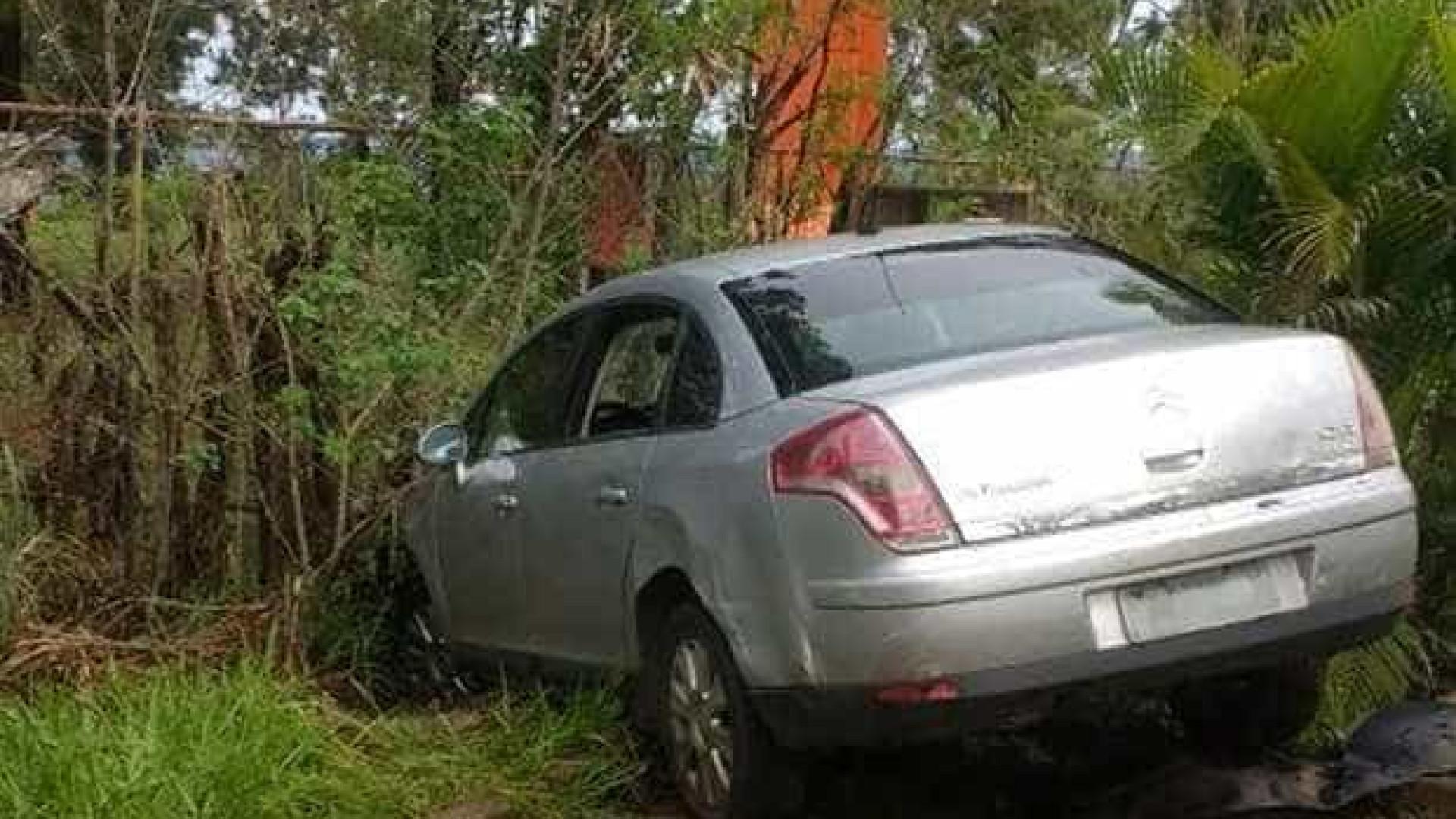 Assista vídeo de motorista bêbado que sobe em árvore para evitar prisão