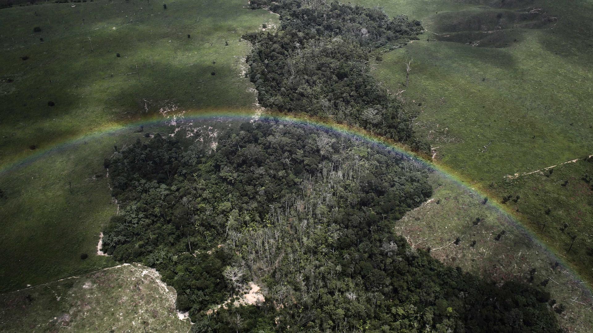 Riqueza mineral da Amazônia pode ter  origem em vulcões antigos