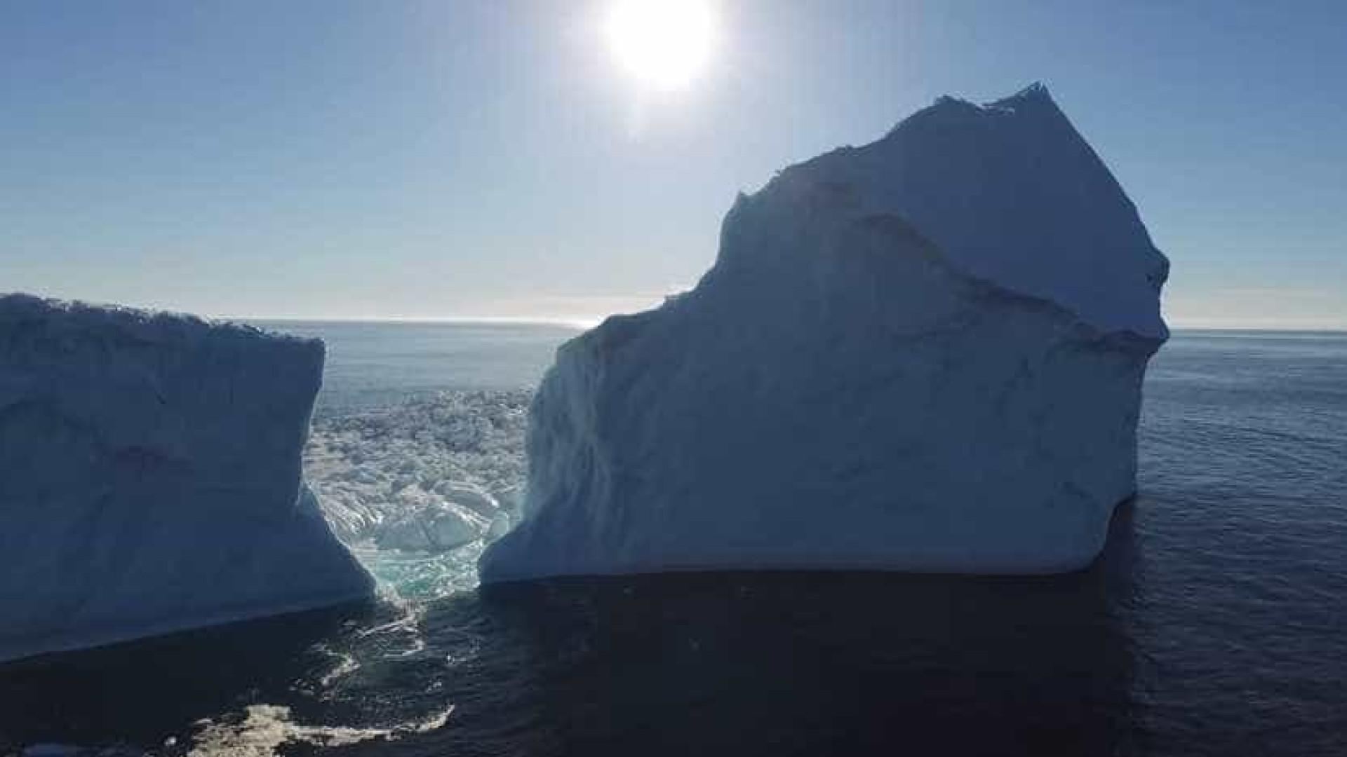 Iceberg chega à costa de cidade no Canadá e impressiona turistas