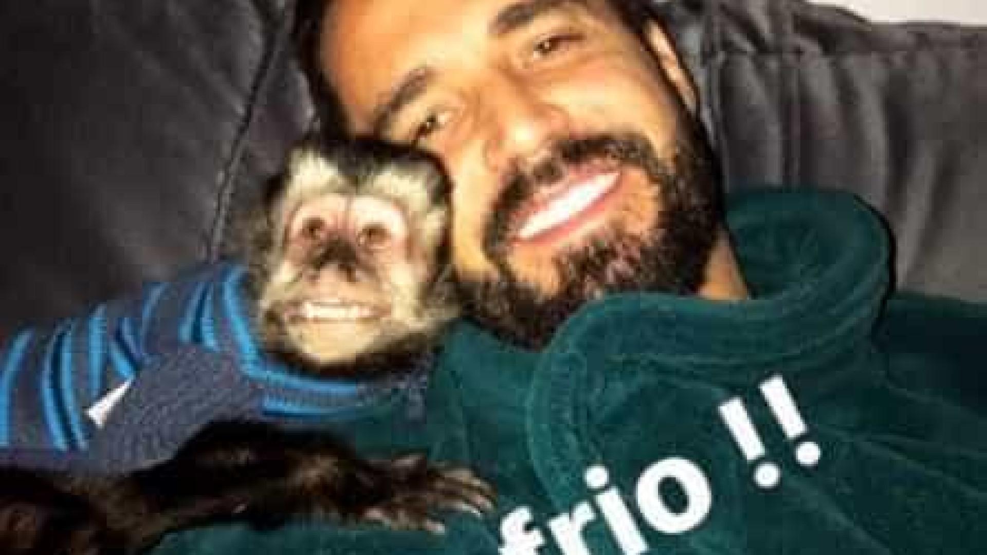 Pudim, mingau e babá: veja regalias de Twelves, macaco de Latino