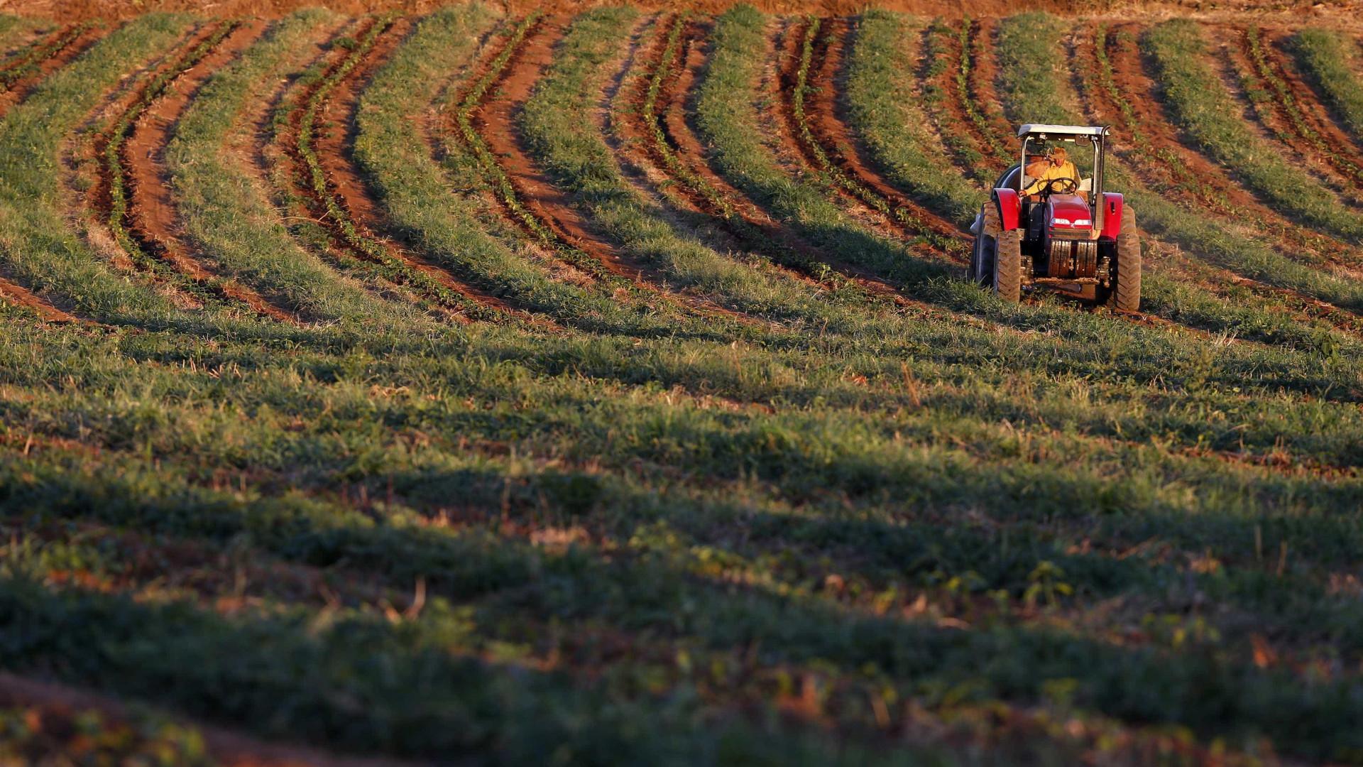 Caixa oferece mais de R$ 10 bi em crédito rural
