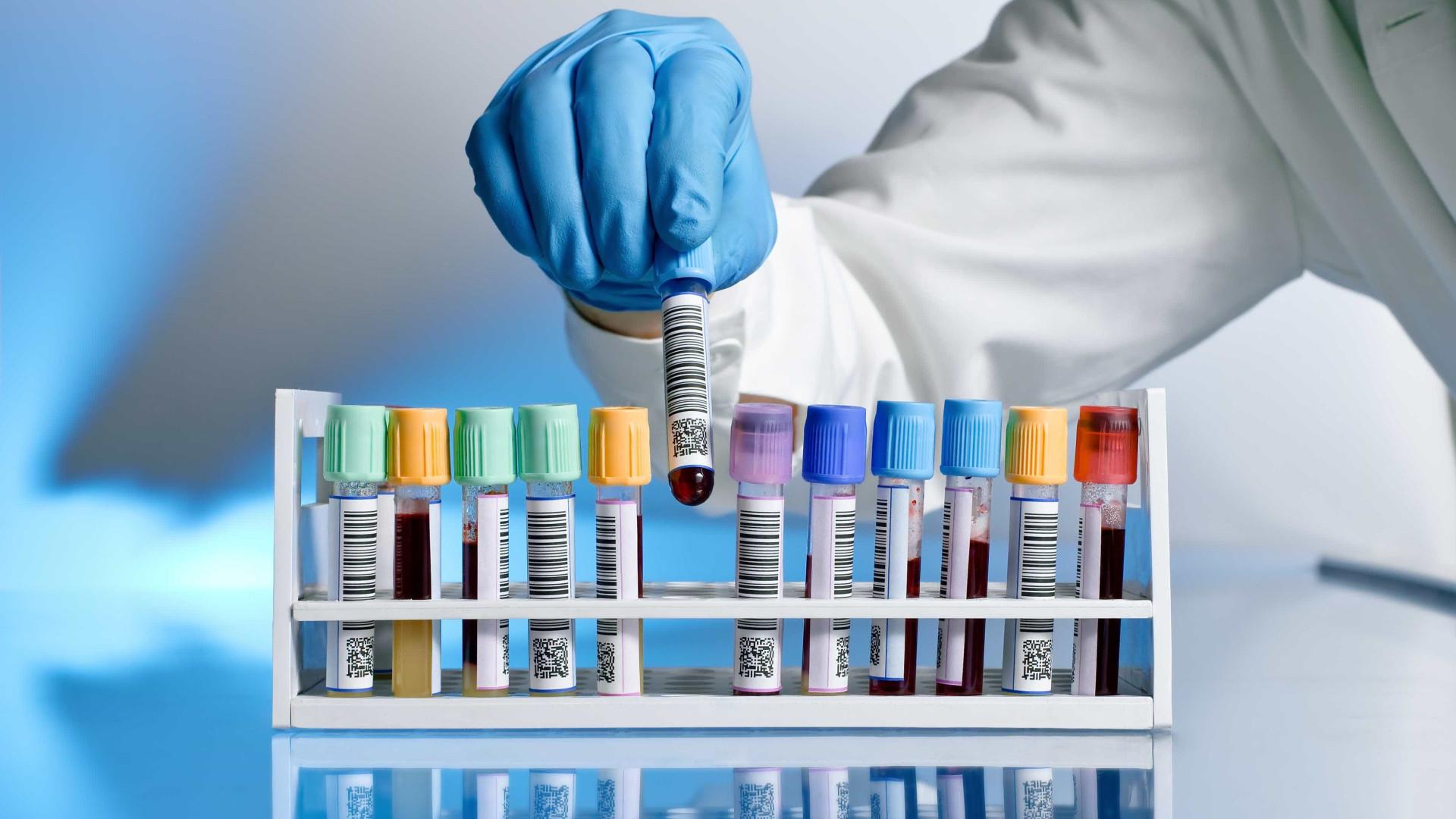 Sistema imunológico contribui para obesidade, aponta estudo