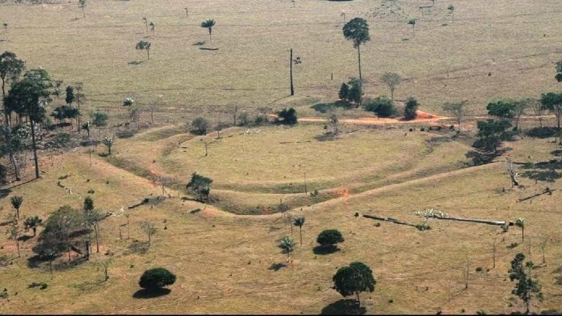 Vestígios de civilização desconhecida são encontrados na Amazônia