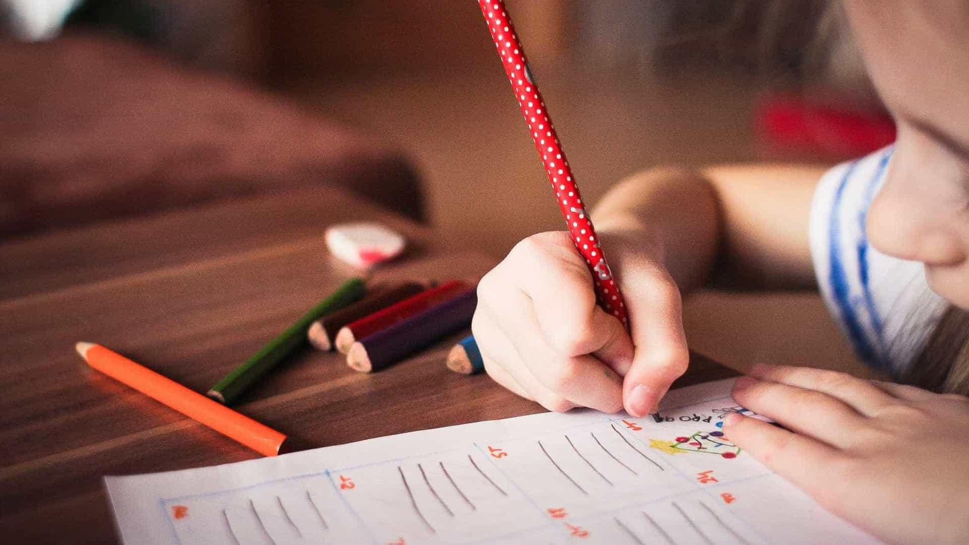 Pais devem acompanhar estudos da criança, mas não interferir