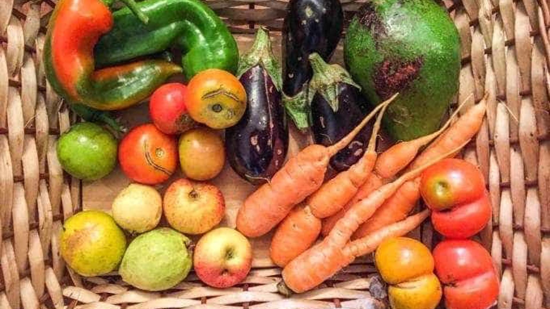 Fruta Imperfeita já salvou 500 toneladas de alimentos 'feios'