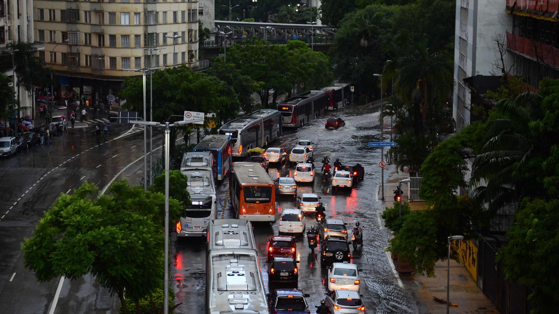 Fortes chuvas causam quedas de árvores e deixam SP em estado de alerta