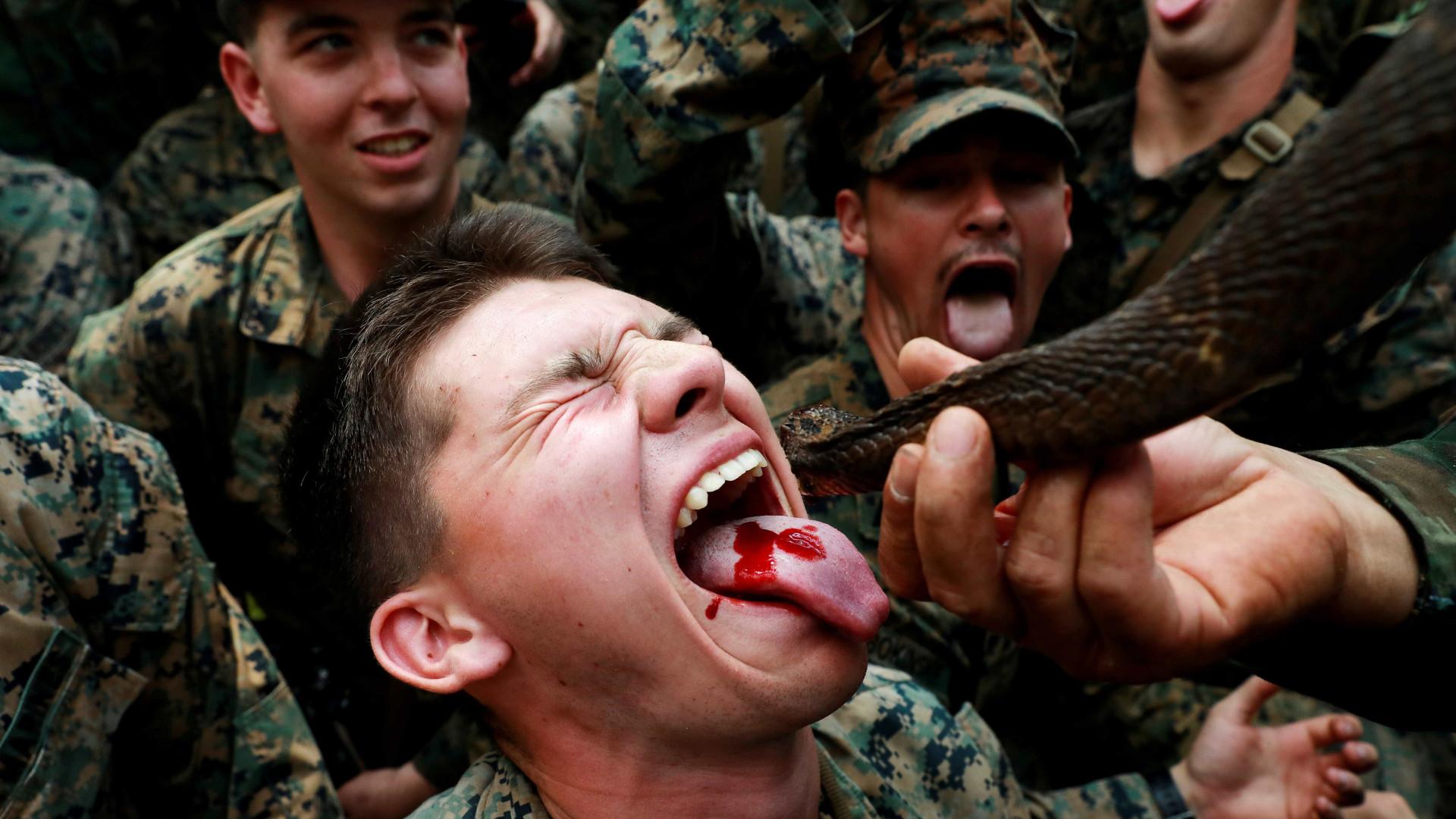 Refeição militar na Tailândia tem sangue de cobra e arroz em camisinha
