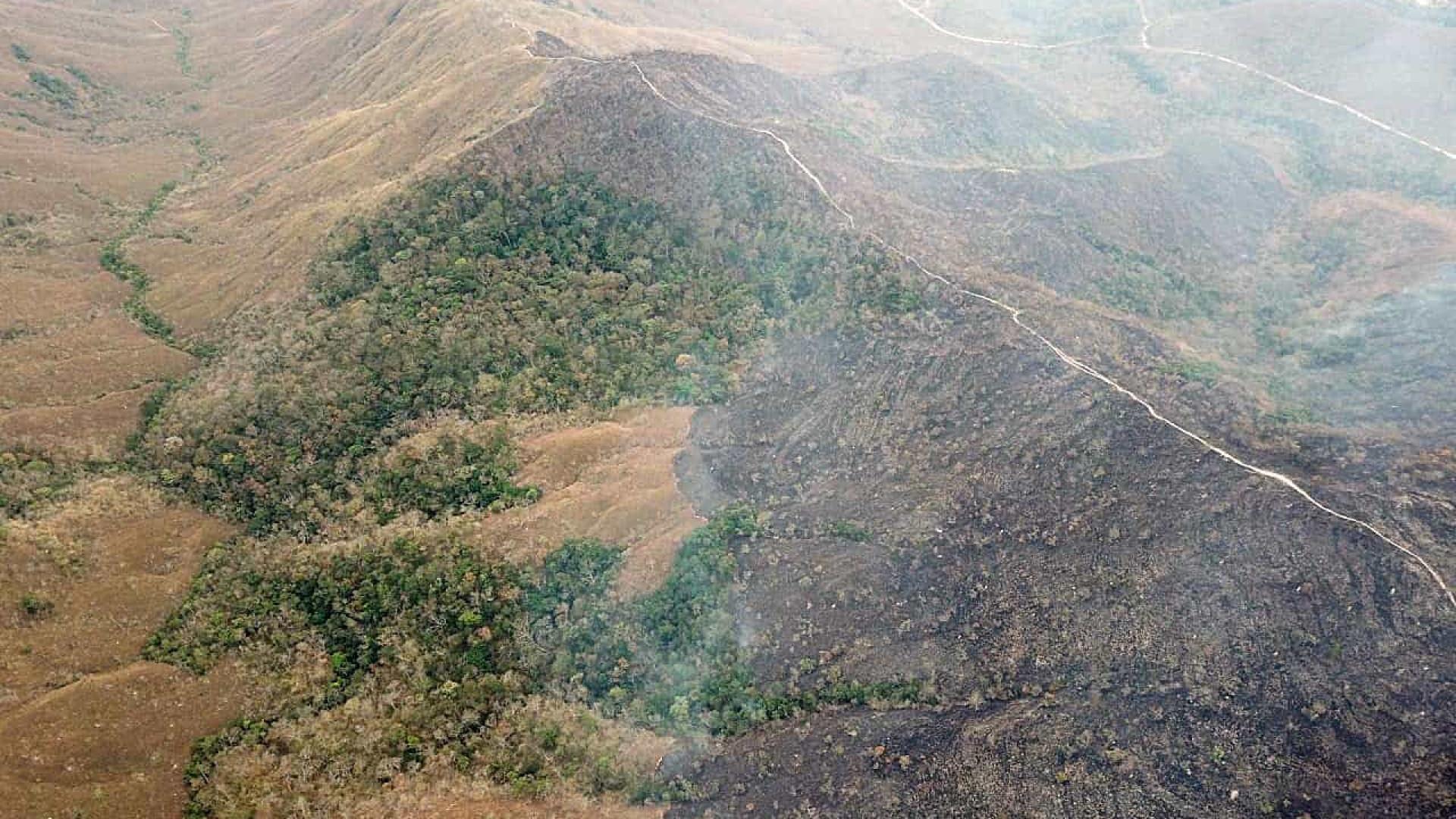 EUA e Brasil lançam fundo para biodiversidade na Amazônia