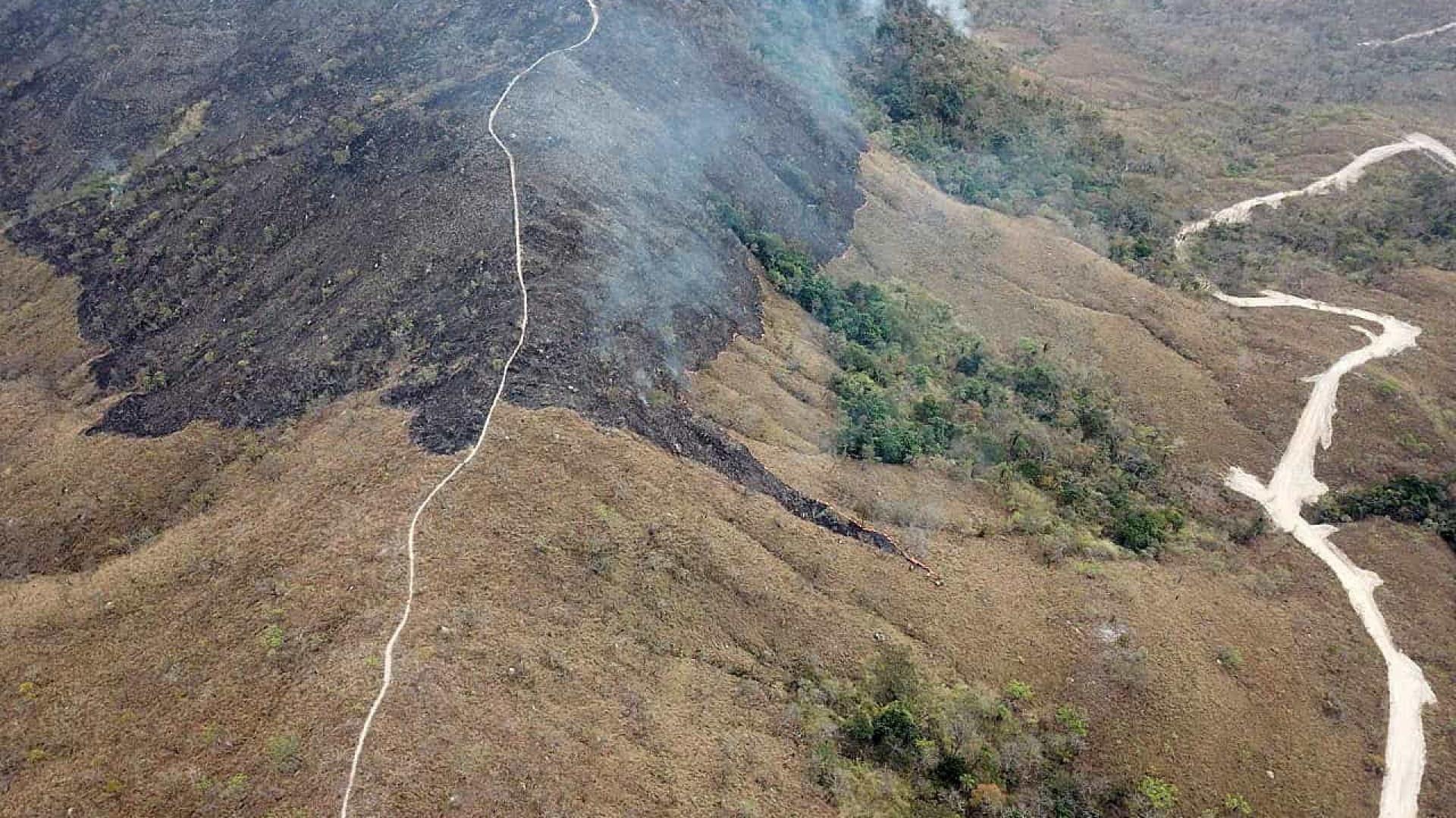 Brasil prepara resposta para Europa sobre destruição da Amazônia