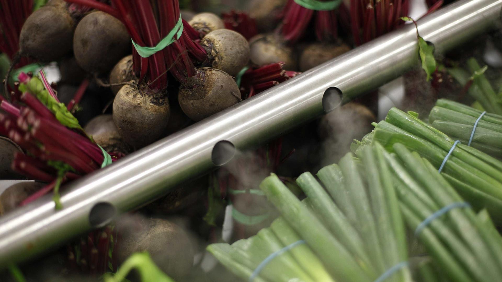 Verduras e legumes mais caros aumentam custo de vida