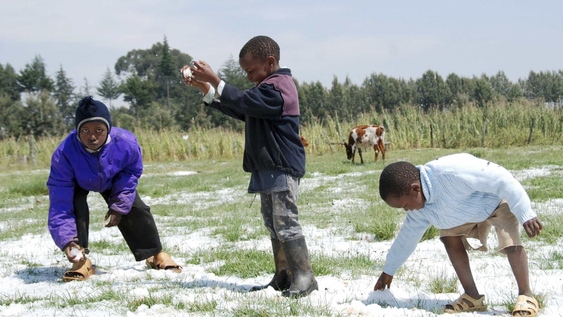 Mais de 350 mil crianças são submetidas a trabalho infantil