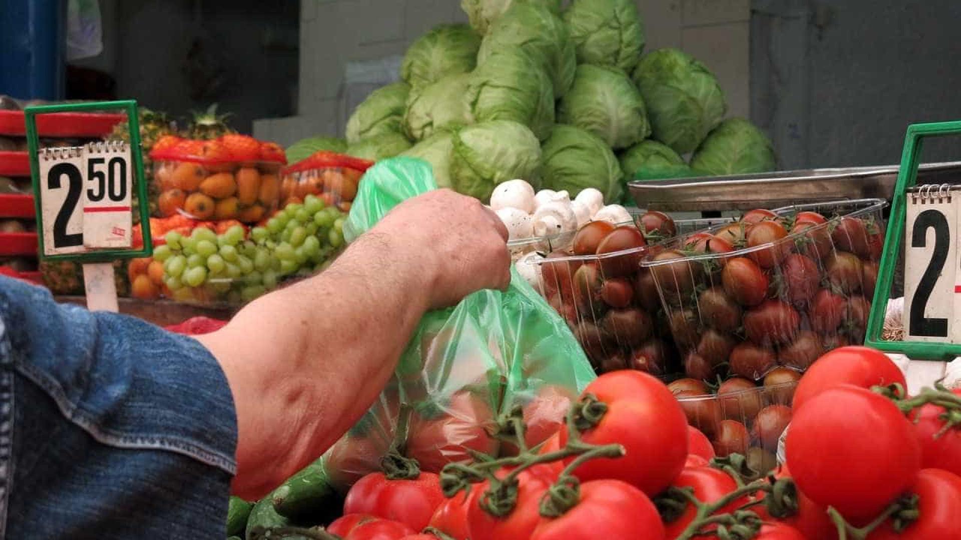 Aproveite os alimentos da safra para preparar receitas econômicas