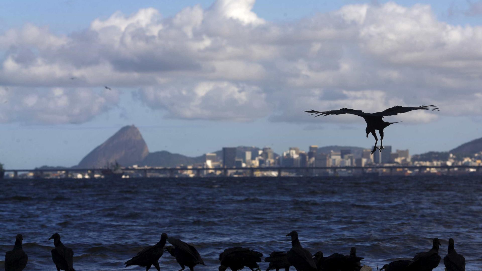 Baía de Guanabara deixará de receber litros de esgoto por dia