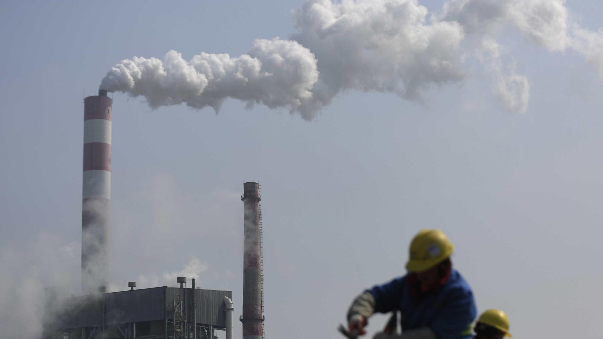 Meio Ambiente: verba de combate à mudança climática quase zera