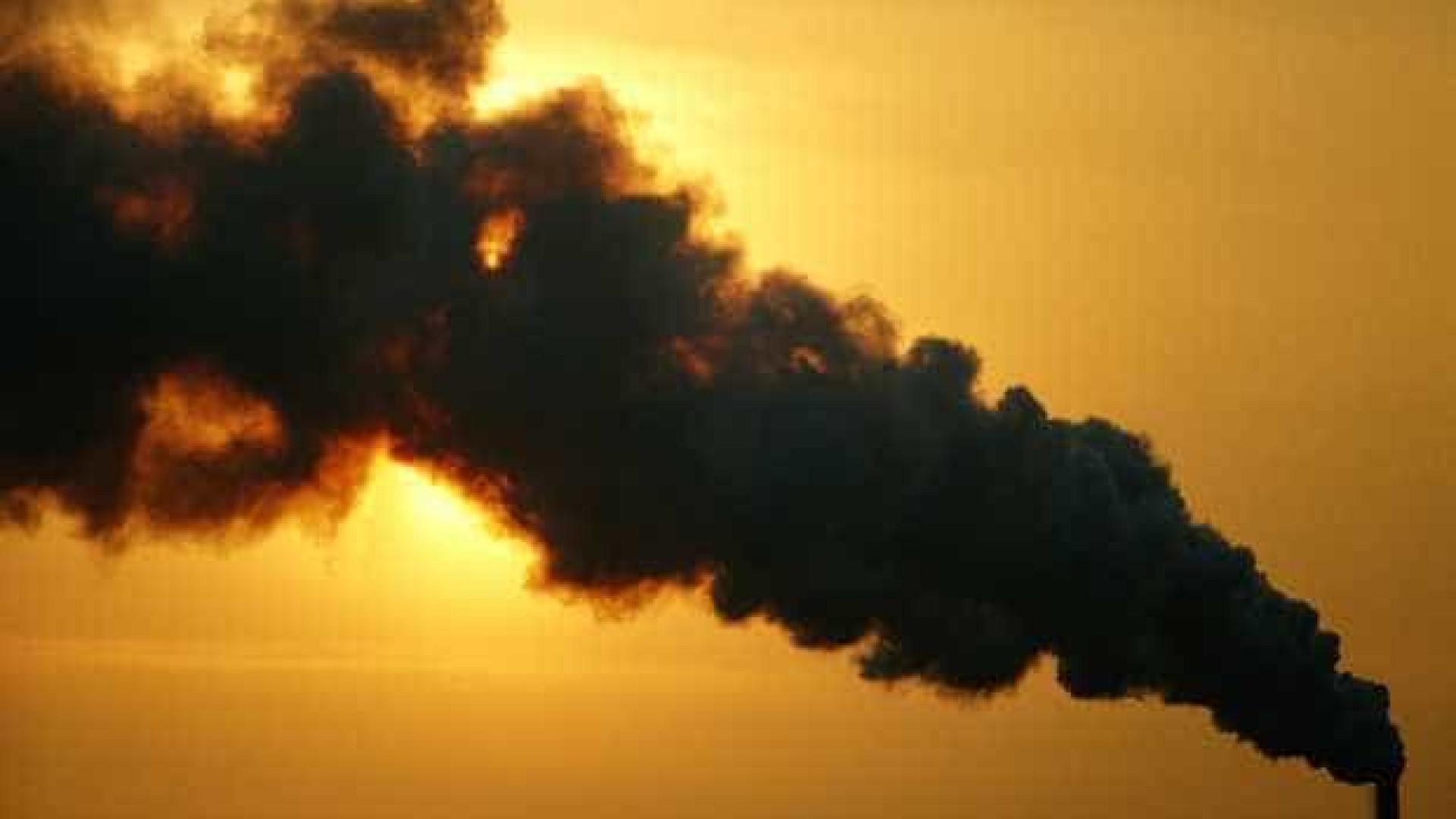 Emissões de gases estufa ligadas ao desmatamento crescem 3,6% no Brasil