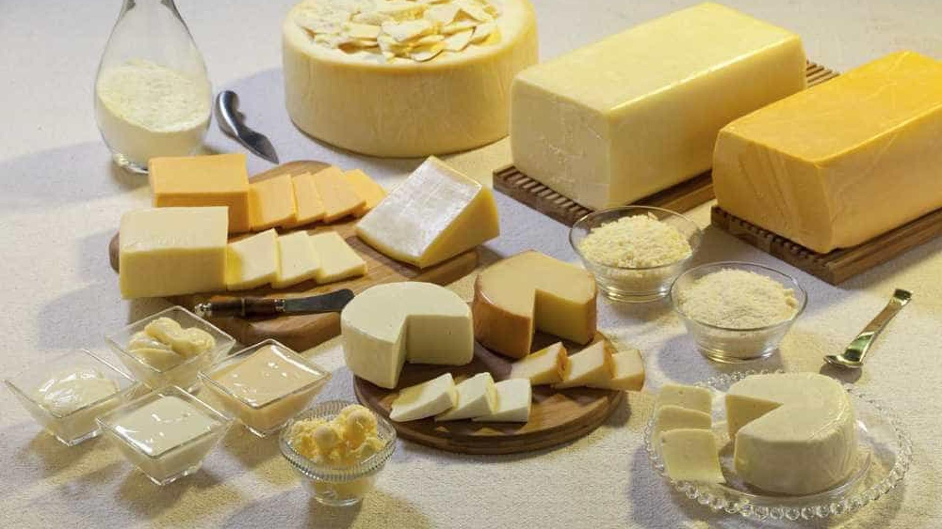 Conheça todos os derivados do leite e seus benefícios