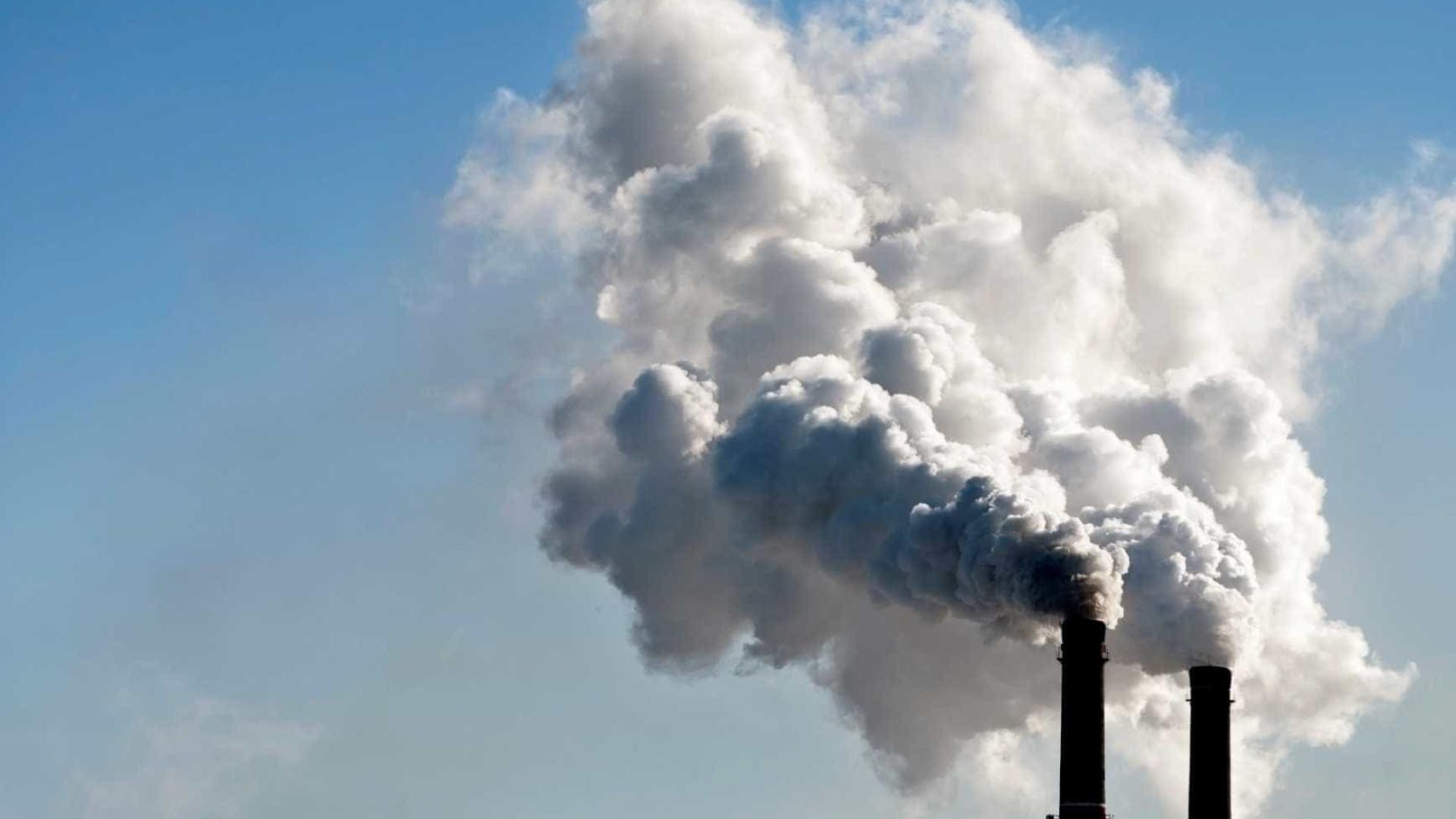 Prometer carbono zero em 2050 não é relevante, diz presidente da Suzano