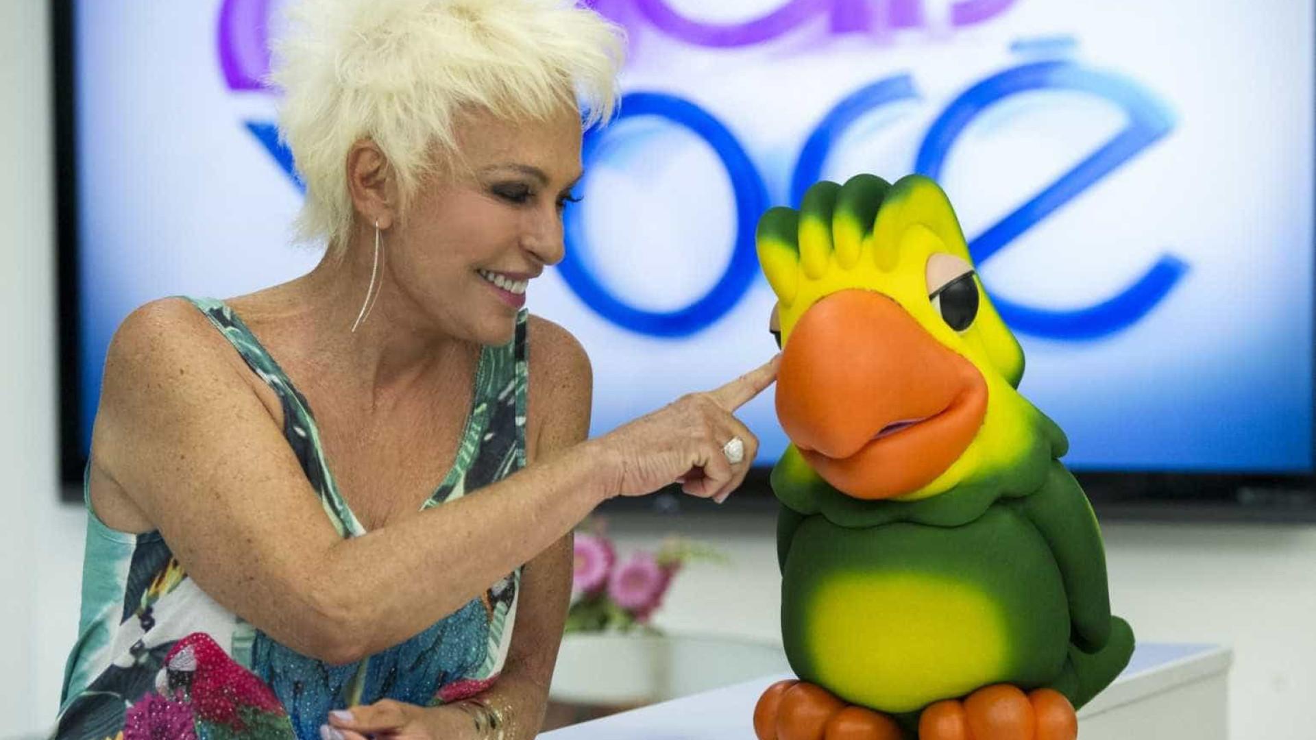Ana Maria briga na Justiça pelo 'papagaio' Louro José