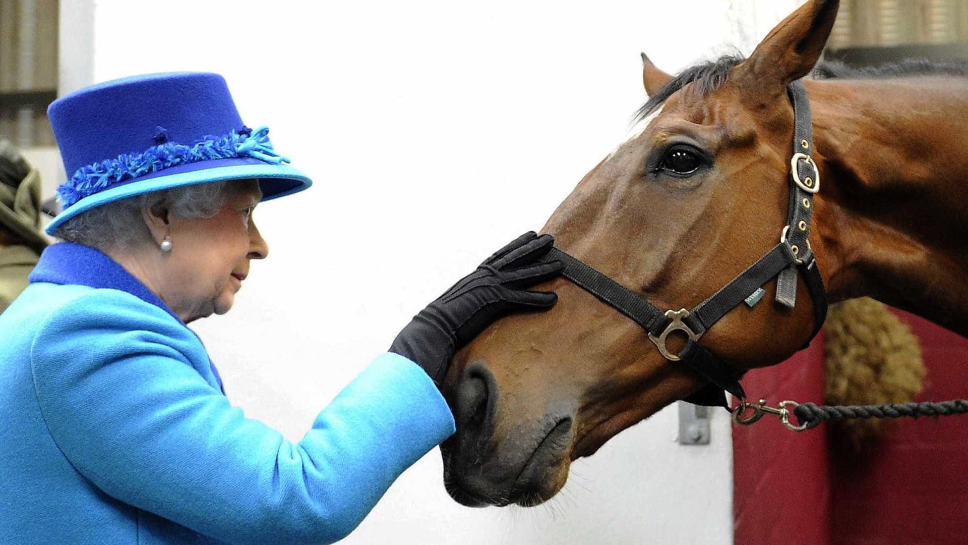 A Rainha Elizabeth II ama os cavalos; veja  imagens da monarca