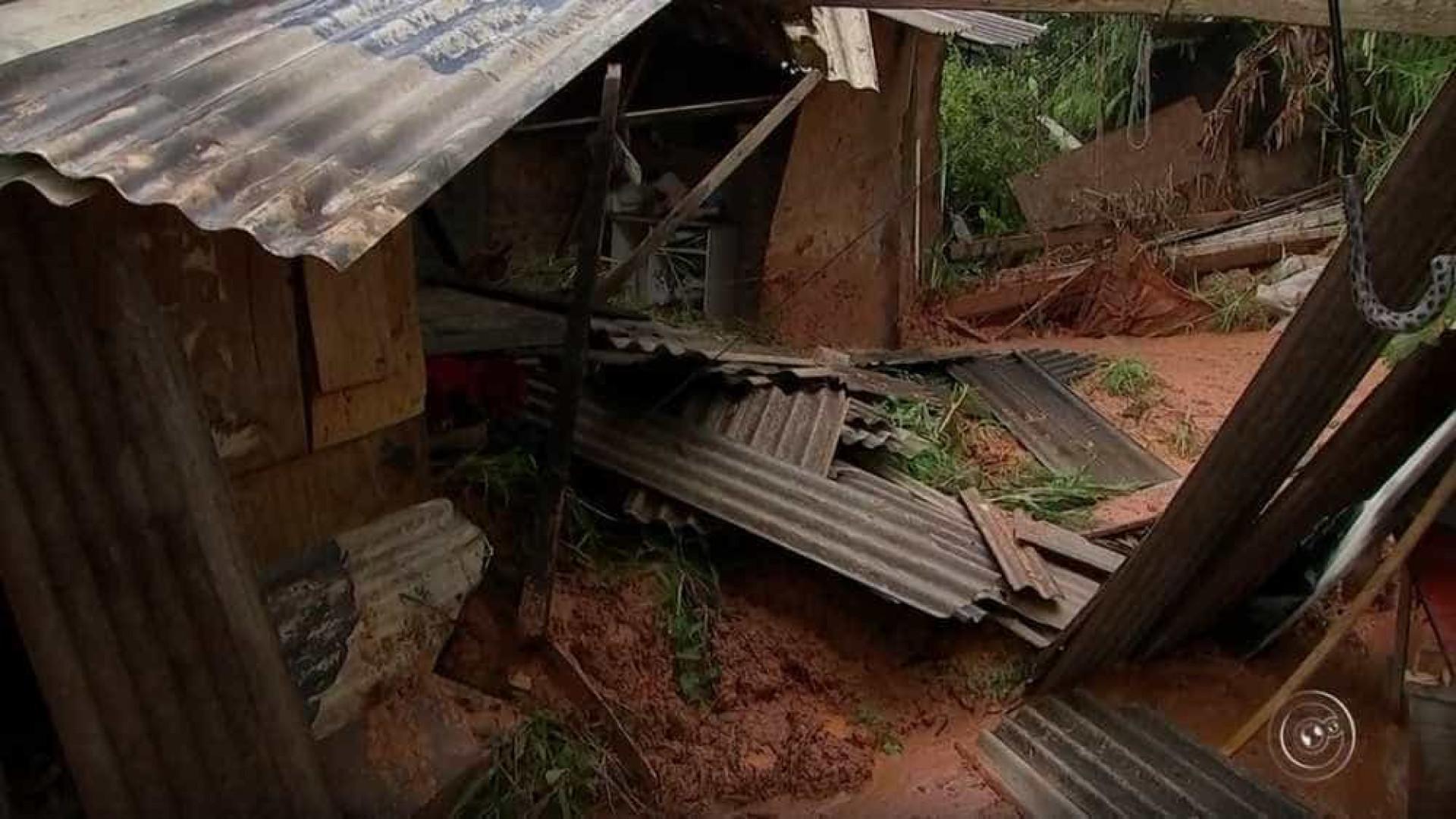 Cachorra morre soterrada após salvar família de deslizamento