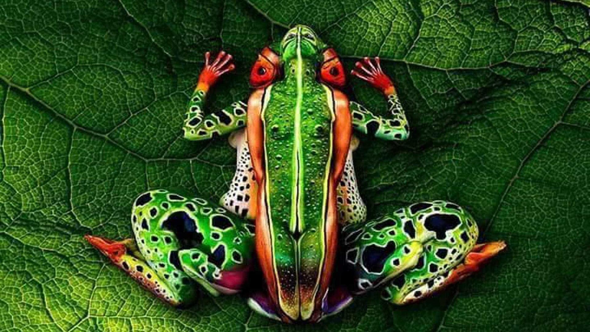 Arte no corpo: pinturas ilusionistas inacreditáveis