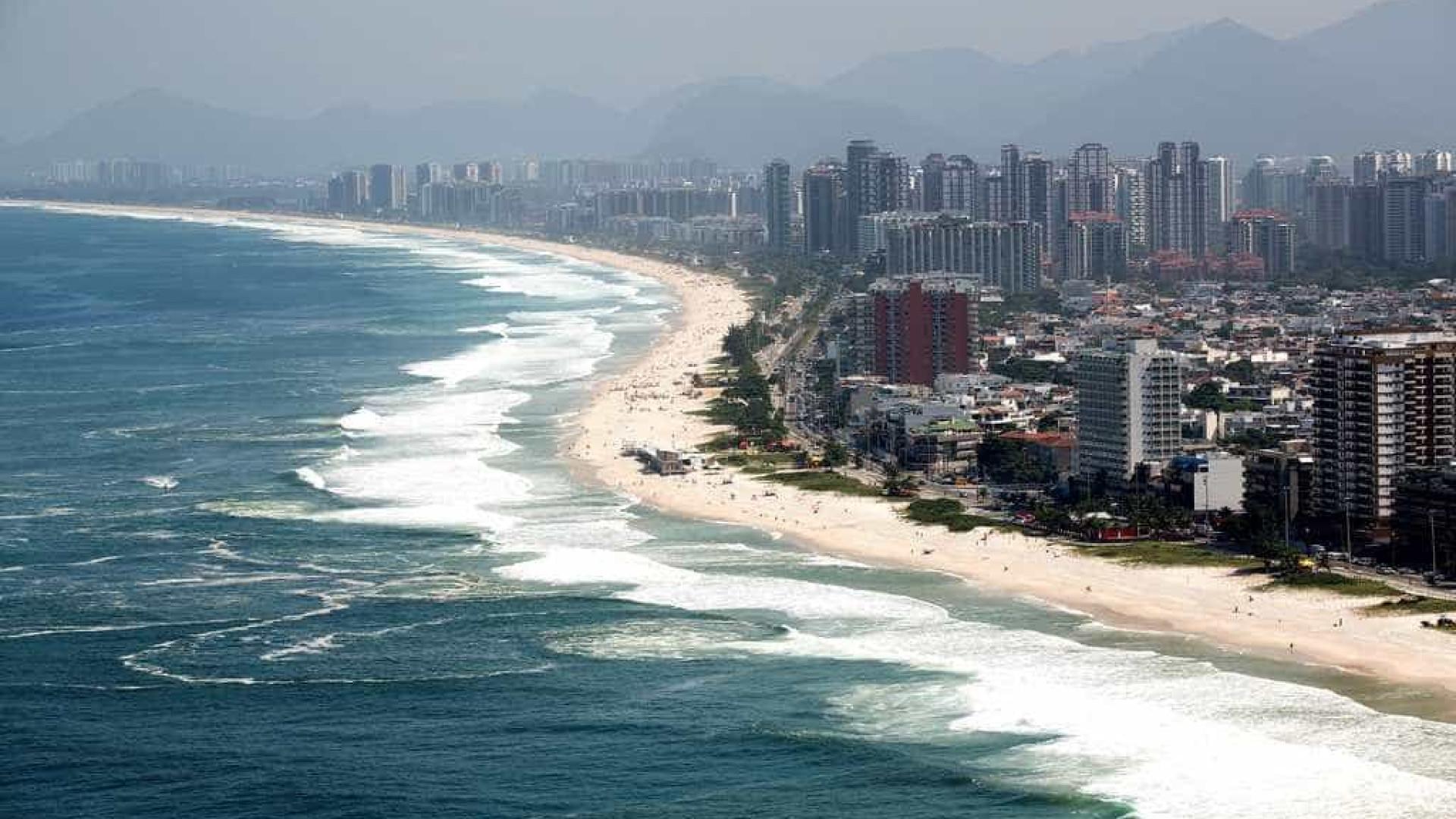 Mais de 40 toneladas de gigogas  são retiradas das praias do Rio