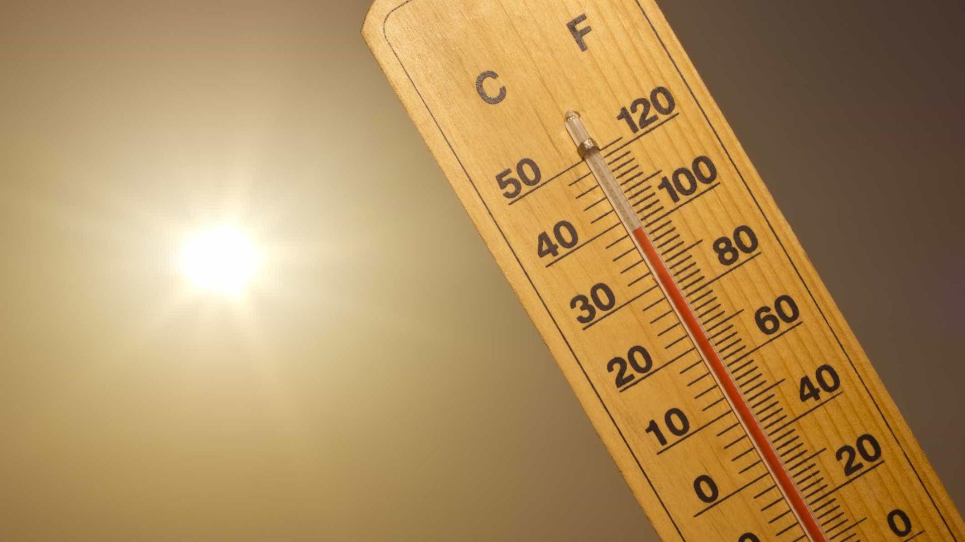 Temperatura média global em agosto foi a segunda mais alta desde 1880