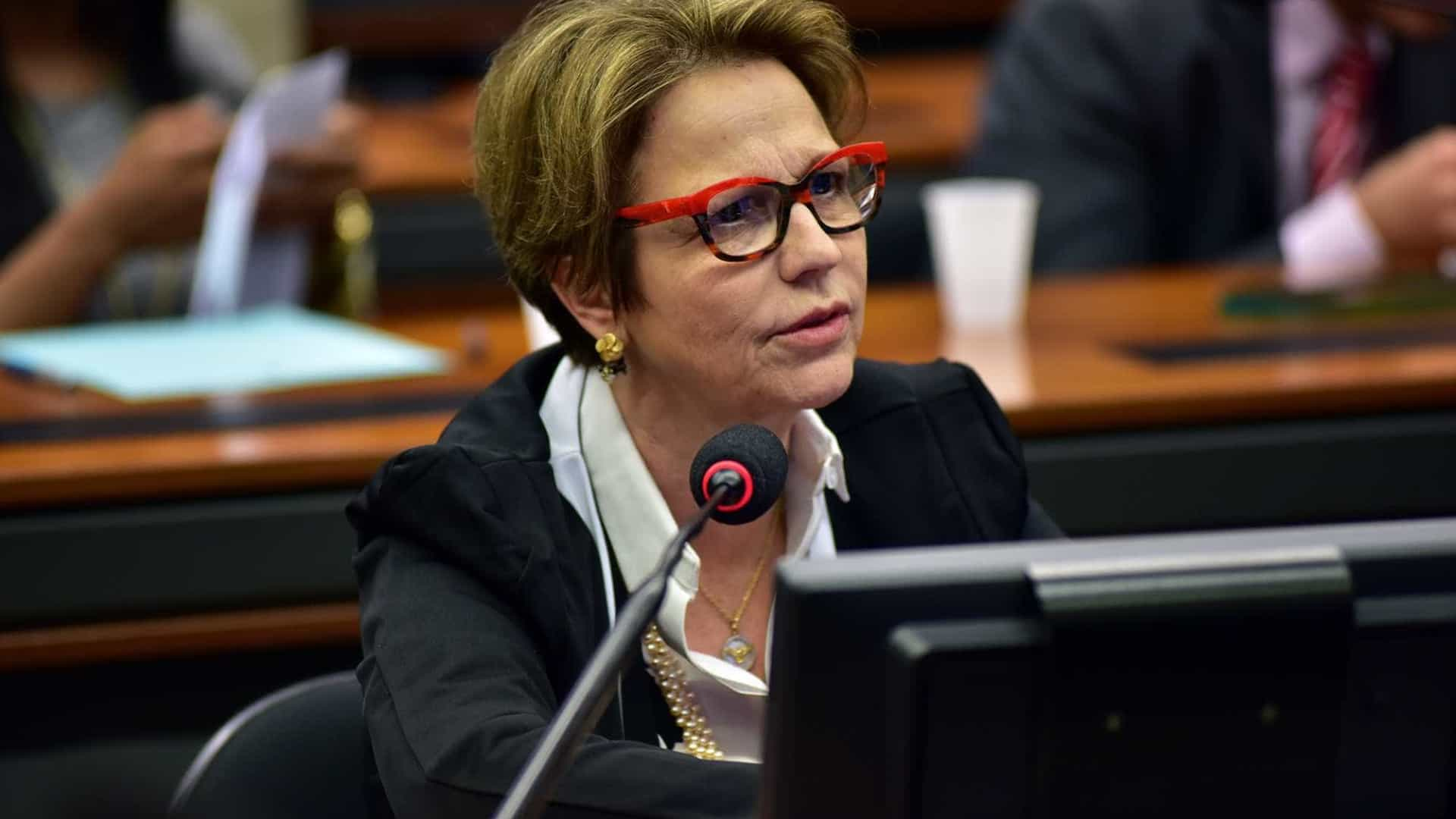 Ministra questiona resultado de estudos sobre agrotóxicos