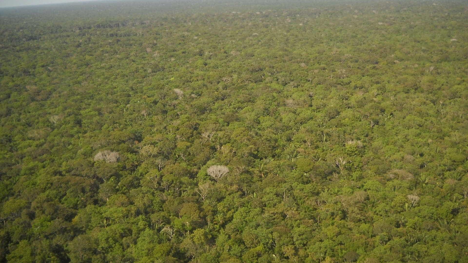 Militares dos EUA na Amazônia é teoria da conspiração, diz general