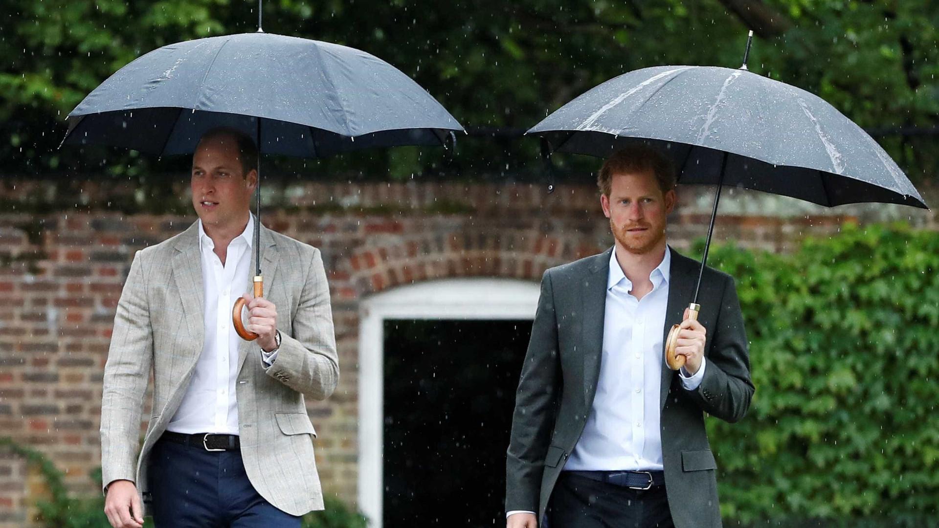 Príncipes Harry e William se reunirão após homenagem a princesa Diana