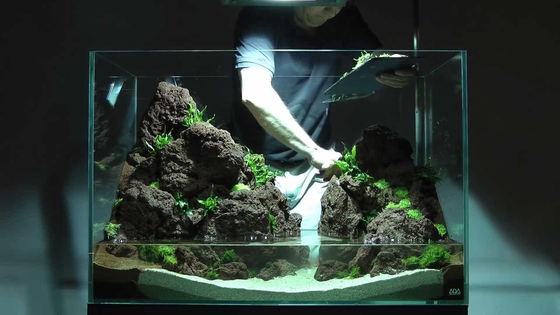 Aprenda a construir um aquário impressionante