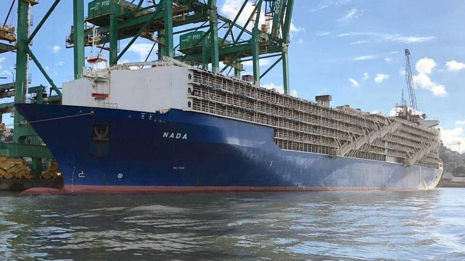 Justiça concede liminar e navio deixa Porto de Santos com 25 mil bois