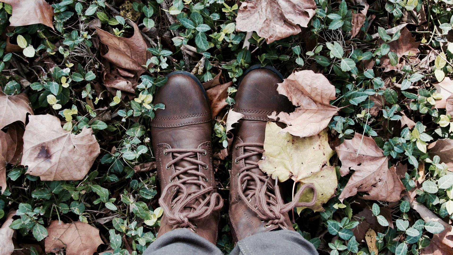 Dicas preciosas para limpar sapatos de couro natural e sintético