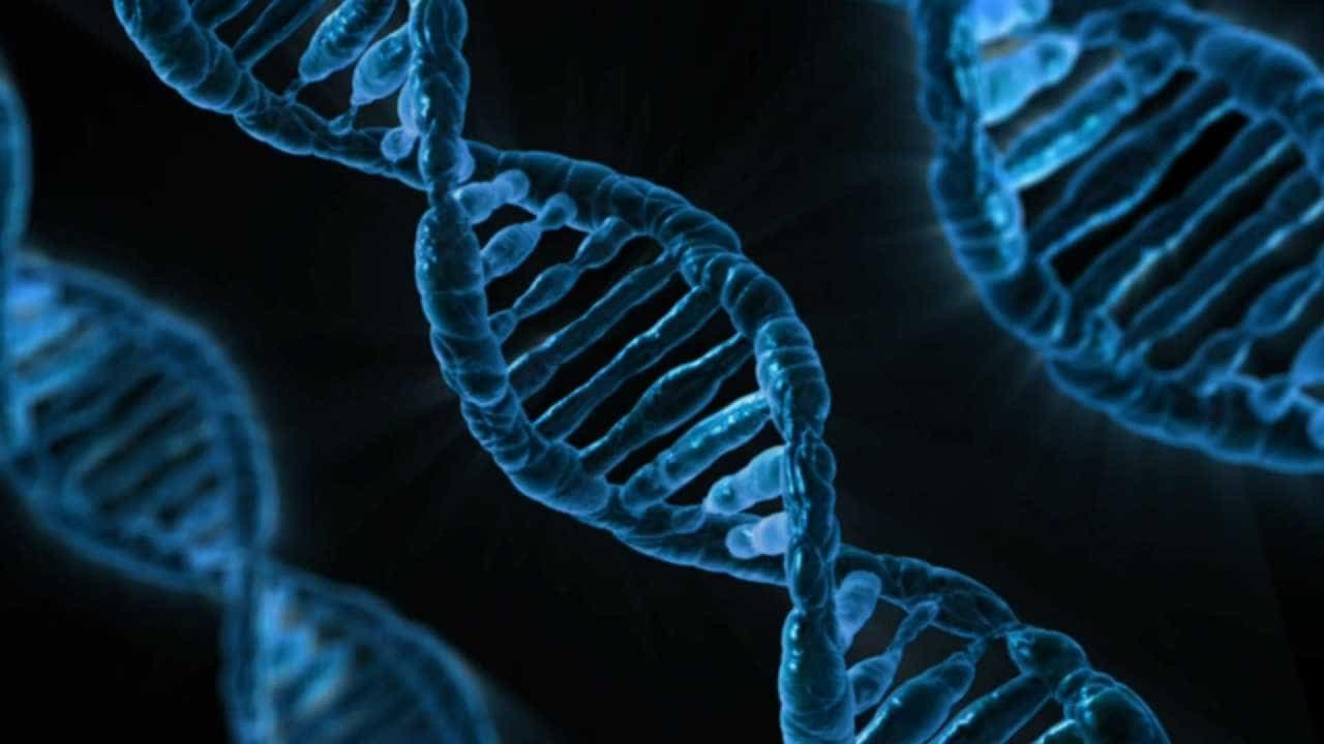 Projeto mapeará genoma de 15 mil brasileiros