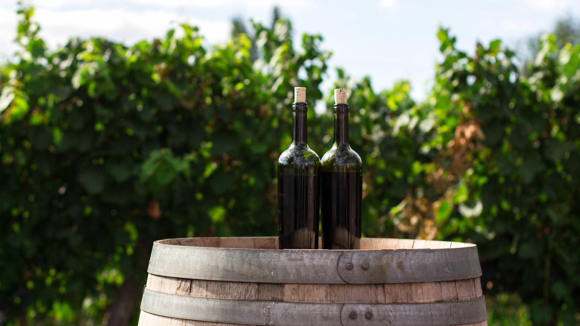 Polícia Federal recupera vinhos furtados do Itamaraty avaliados em R$ 57,6 mil