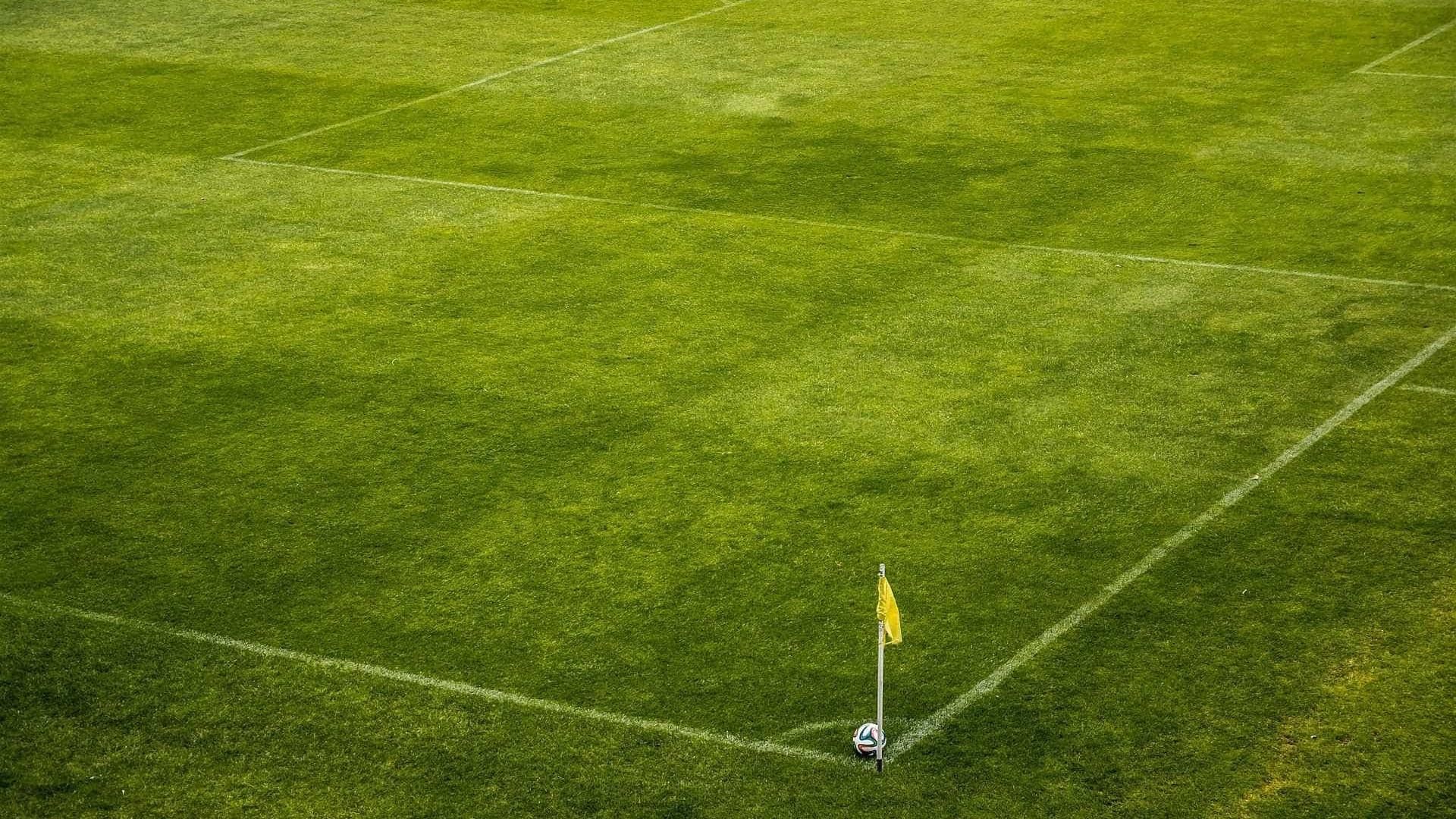 Gramado do Mineirão é reparado para jogo entre Brasil e Argentina
