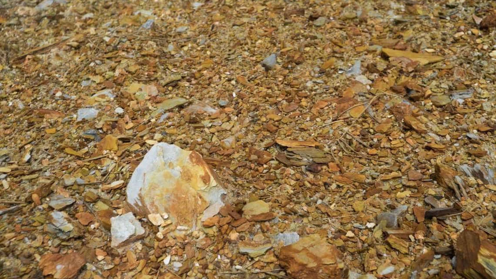 Receita faz operação contra extração e comércio ilegal de ouro