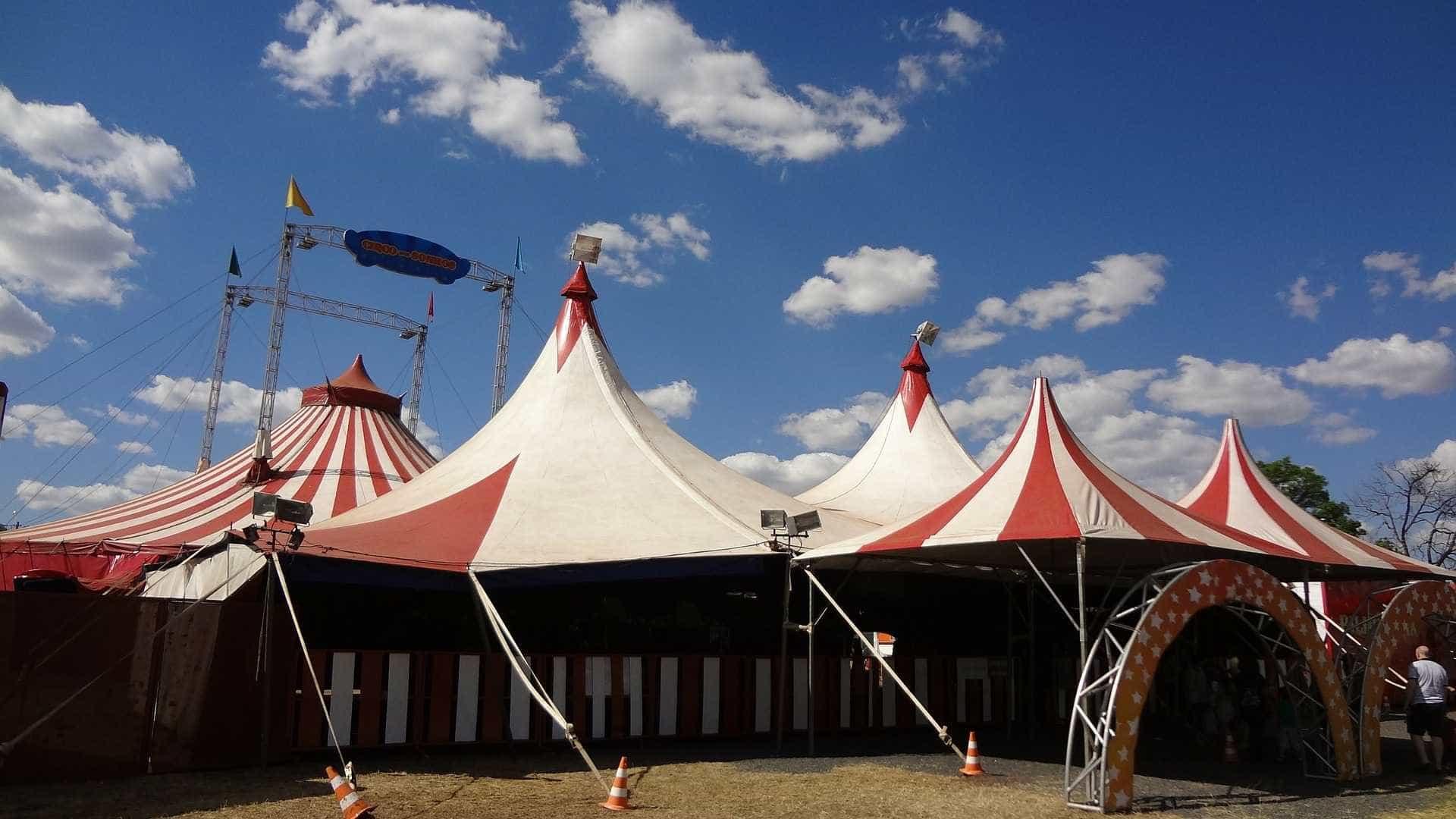 Morre trapezista que caiu durante espetáculo de circo em Cuiabá