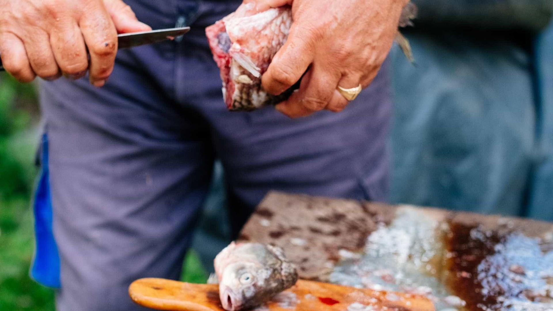 Pescador encontra tênia gigante dentro de peixe nos EUA