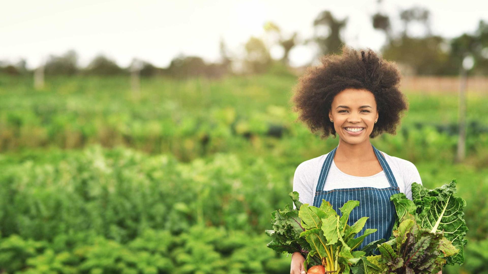 Consumir alimentos orgânicos reduz risco de câncer, aponta estudo