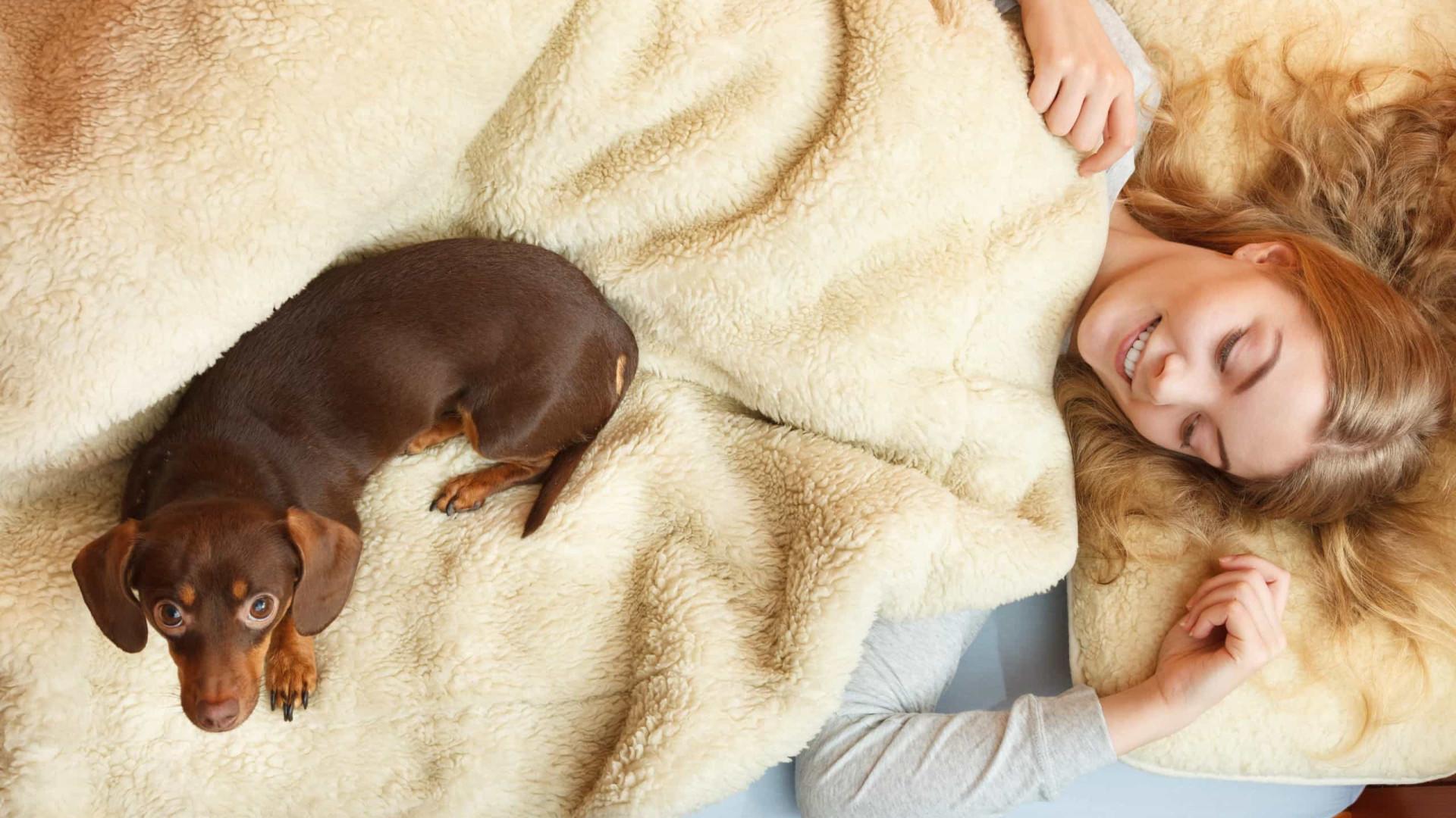 Mulheres dormem melhor com cachorros do que com homens, diz estudo