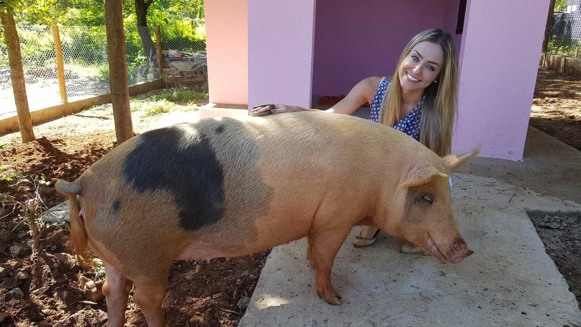 BBB: Paula tem porco de estimação, não curte balada e já foi Miss