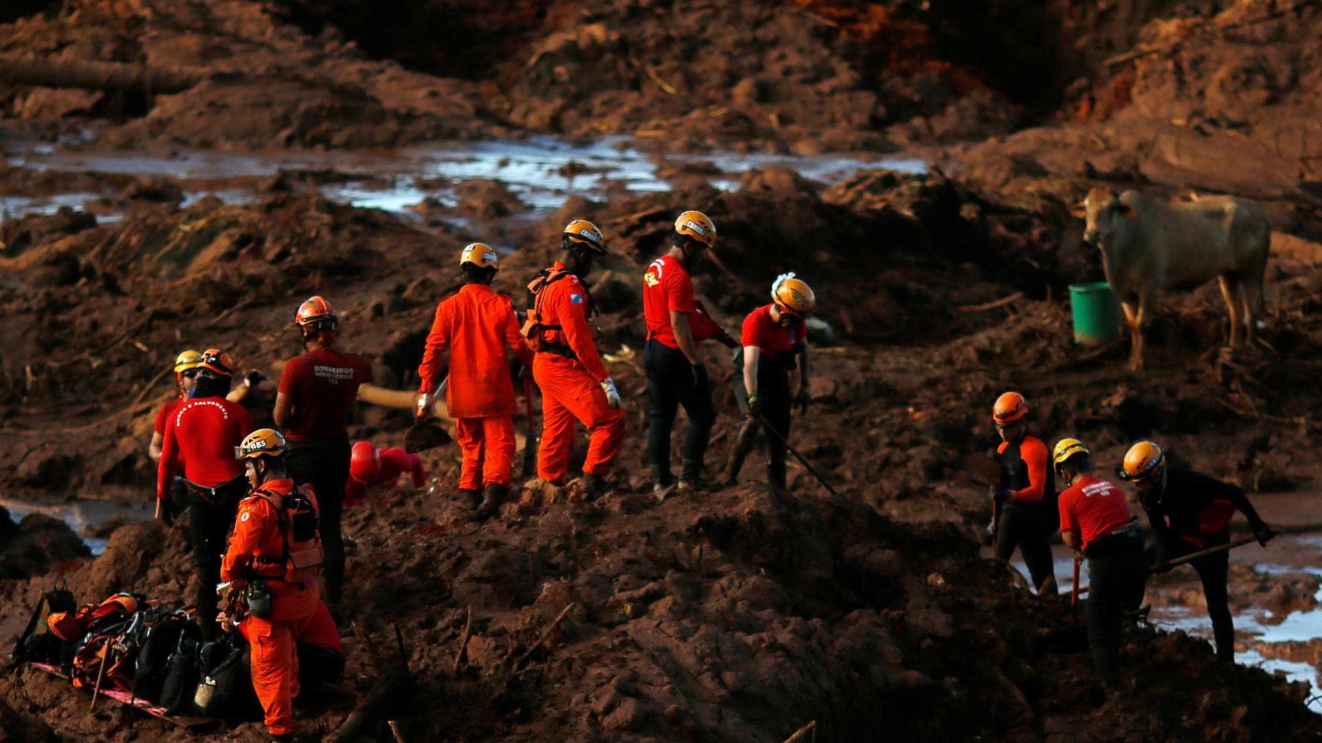 Brumadinho: polícia identifica falsos desaparecidos em lista de vítimas