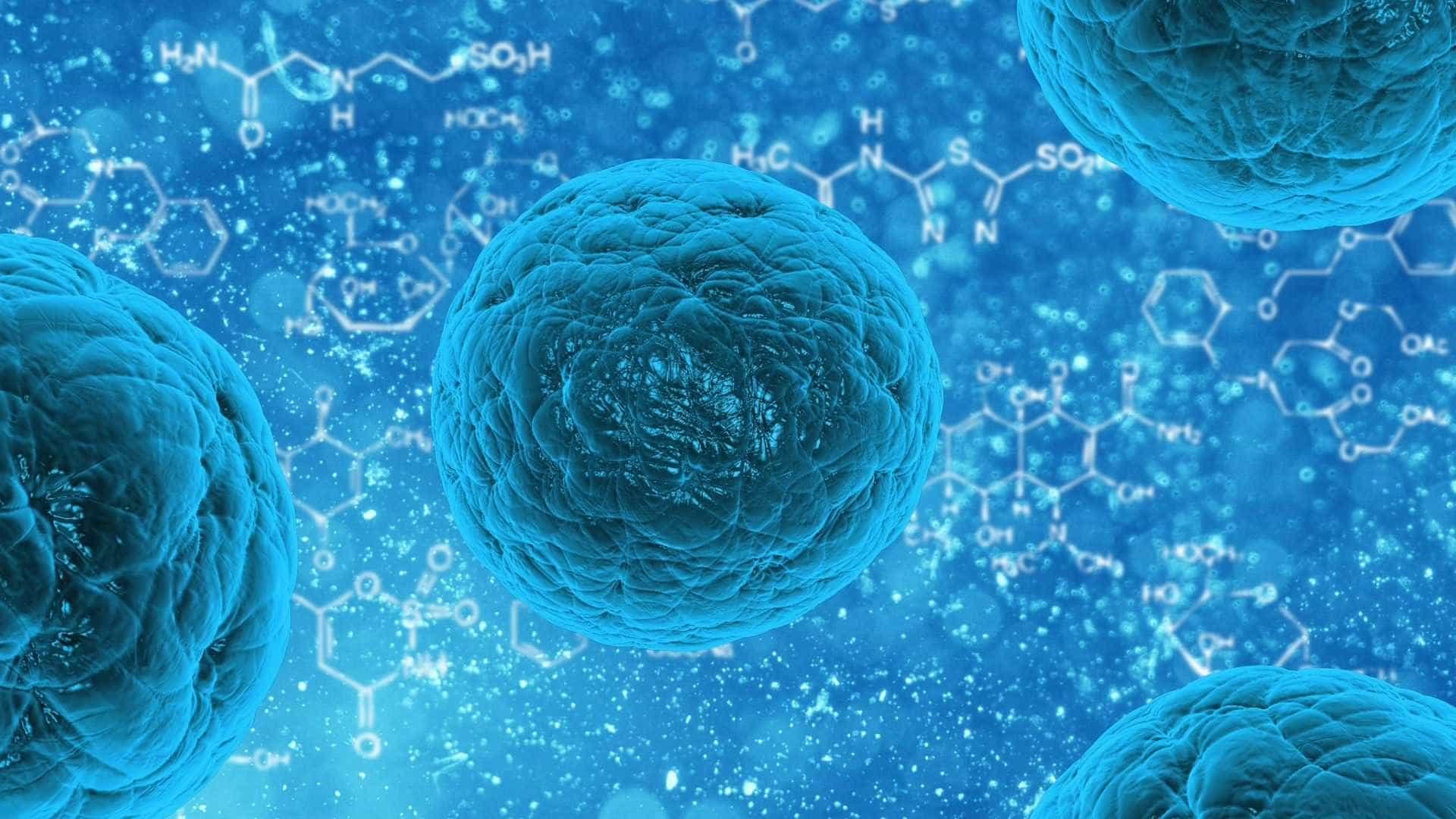 Dois novos tipos de rotavírus são identificados no Brasil