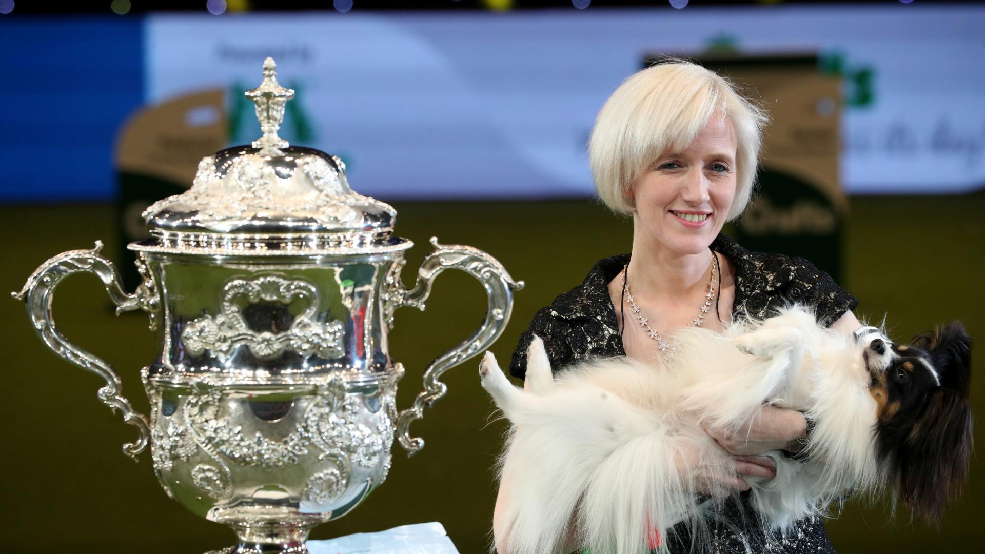 Dylan, da raça de cães papillon, leva o troféu do Crufts