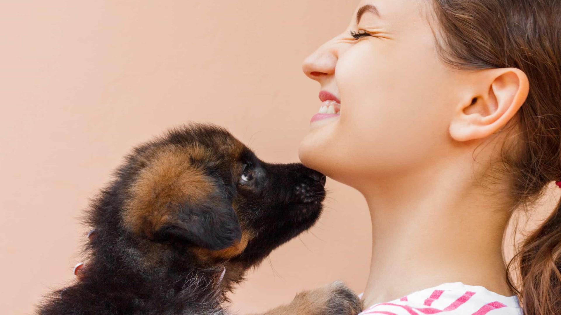Adotar um cachorro pode ser igual a escolher alguém para namorar